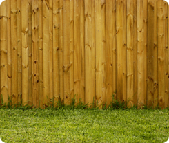 Fence and Grass - Fence Installation Houston TX